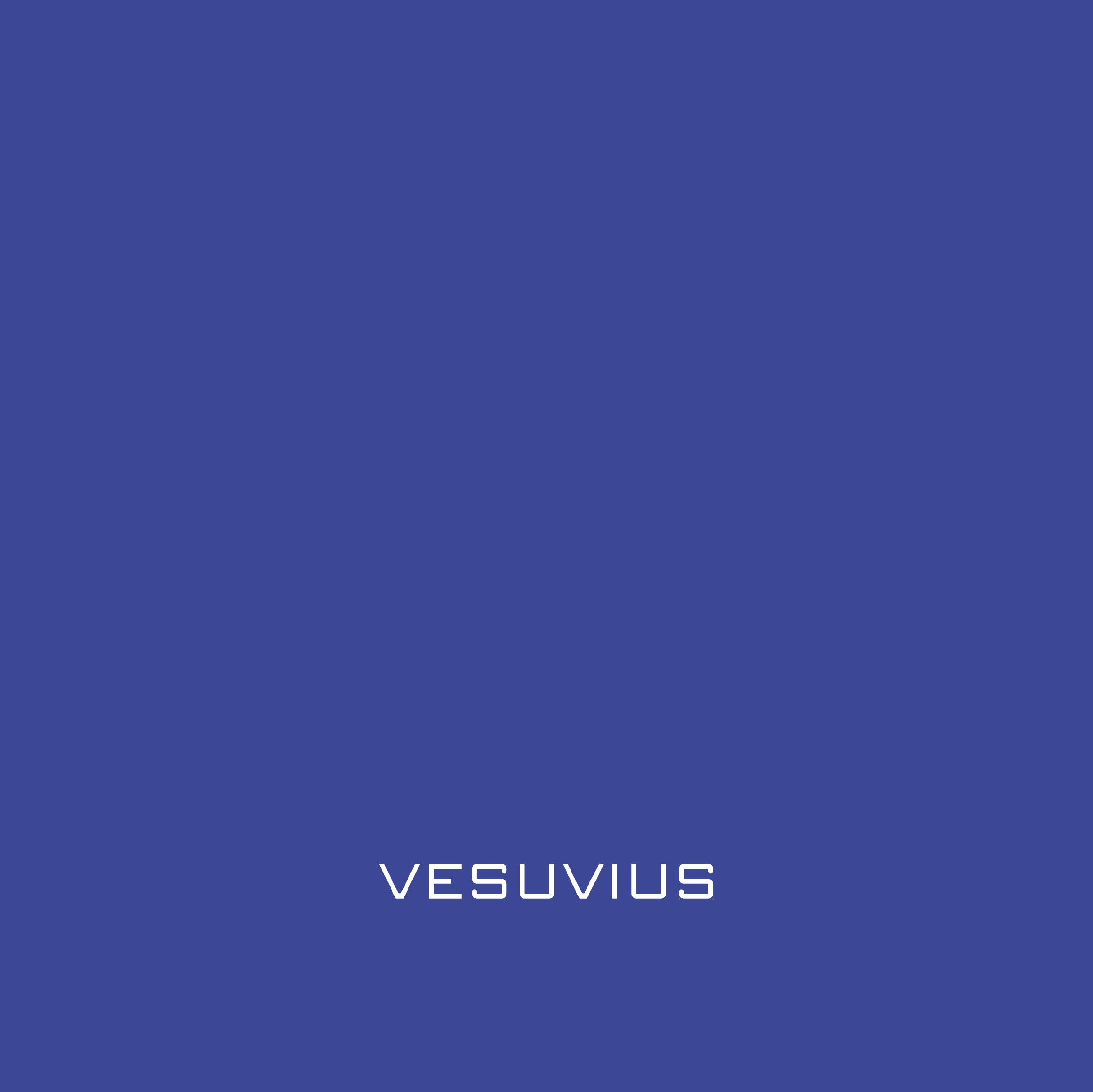 Vesuvius Poland – marketing rekrutacyjny online